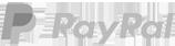 PayPal brand logo