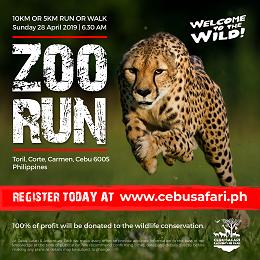 Cebu Safari social media design with a running cheetah in the field for fundraising information