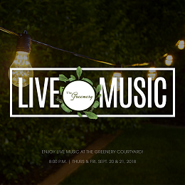 The Greenery live music design with a series of light bulb hanging in the grass field