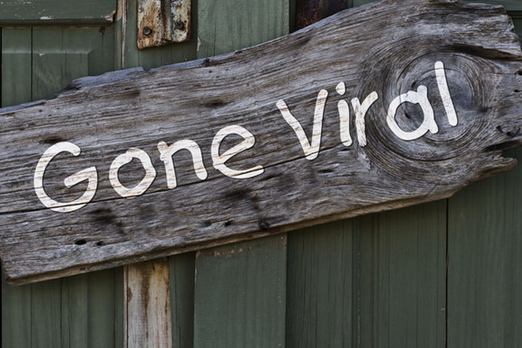Gone viral wooden sign placed at the door