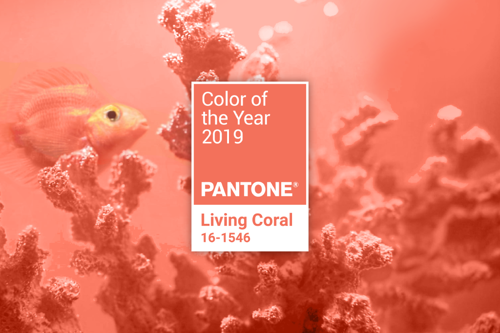 An image of the coral reef in pink with tagline 'Color of the year 2019'